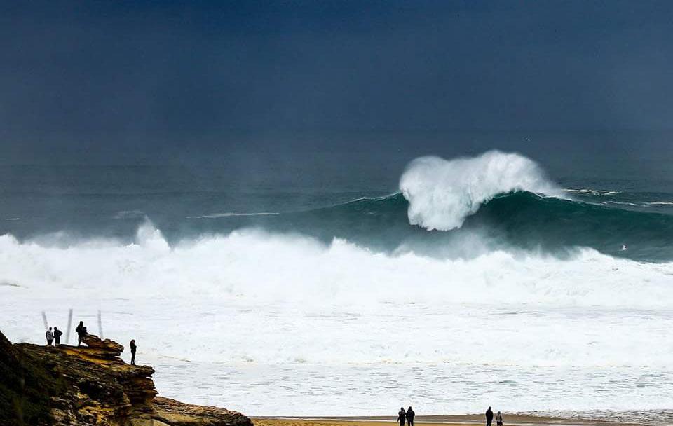 Surfing Vox