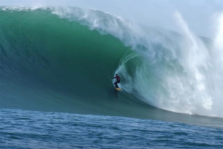 surfing vox mag